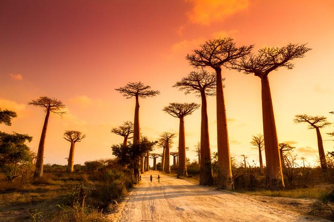 ST_Madagascar