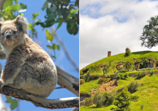 HOT! Flights from Germany, Portugal or Scandinavia to New Zealand & Australia from only €465!