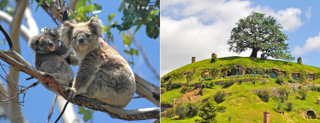 Amsterdam to Australia or New Zealand from only €621!