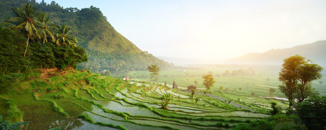 Cheap full-service flights from South Korea to Bali from only $335!