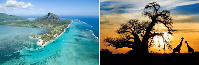 Italy to South Africa, Mauritius or Seychelles from only €385!