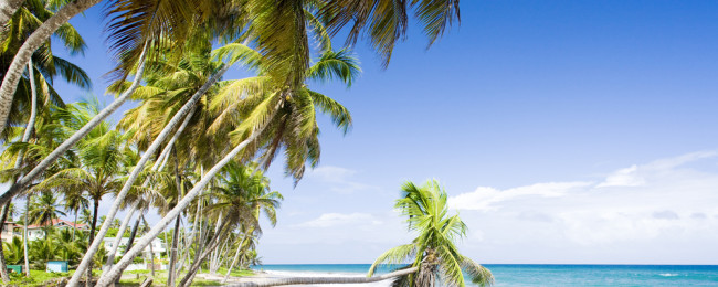 Washington to Grenada for just $266!