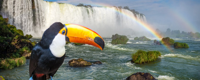 Washington to Iguassu Falls, Brazil for $496! 2 in 1 with Sao Paulo for $568!
