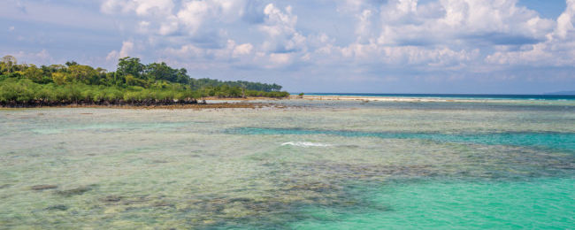 Full-service flights from Indian cities to the exotic Andaman Islands from only $66!