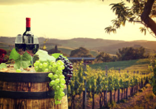 5-night stay in a well-rated property in Tuscany countryside + flights from Frankfurt Hahn for €129!