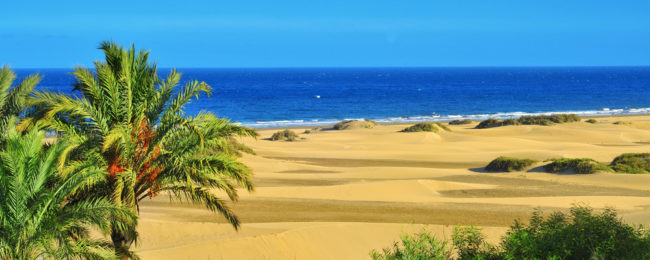 From Germany to Mallorca and Gran Canaria from only €44!