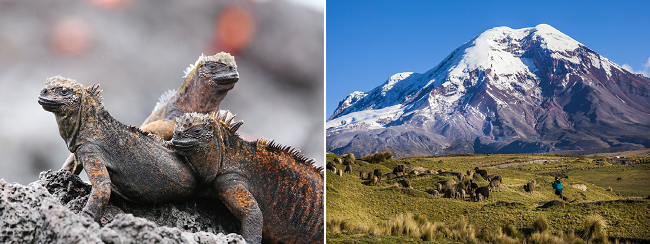 2 in 1: Spanish cities to both Galapagos and Guayaquil, Ecuador in one trip for only €617!