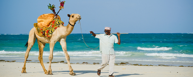 CRAZY HOT! All inclusive 7-night stay in top-rated beach resort in Mombasa, Kenya + flights from Amsterdam for €370!