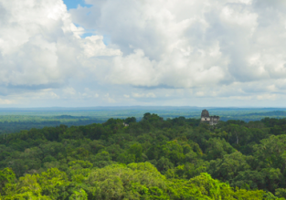 CHEAP! Cheap non-stop flights from Houston to Guatemala for only $41 one way or $120 return!