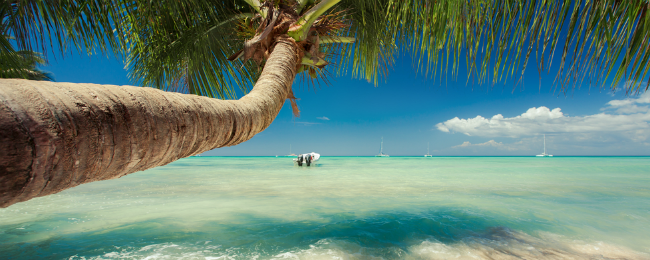 Brussels to Jamaica or the Dominican Republic for only €271!