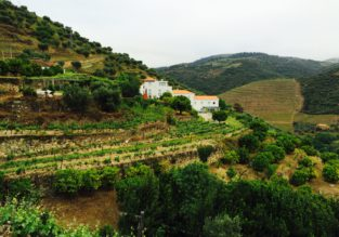 Visit splendid Douro! 4-night stay at well-rated villa + cheap flights from Paris for only €116!