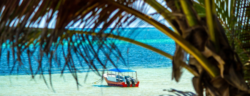 Cheap flights from Frankfurt to Mombasa, Kenya for only €345!