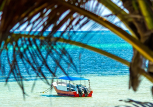 Cheap direct flights from Frankfurt to Mombasa, Kenya for only €314!