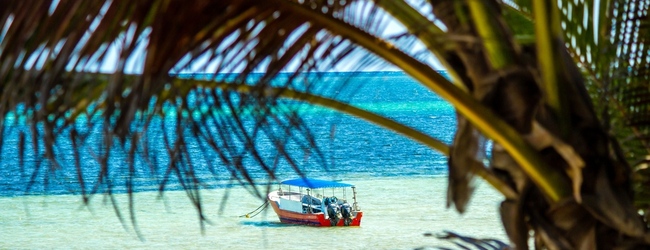 Cheap flights from Brussels to Mombasa or Zanzibar for only €320!