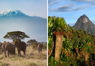 Cheap Turkish Airlines flights from Oslo to several African destinations from only €363!