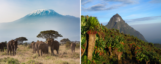 SUMMER, X-MAS or NEW YEAR 2 in 1: Tanzania and Rwanda from London from £280!