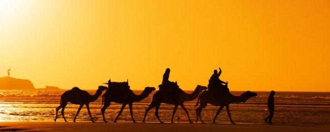 Morocco roadtrip! 11-night accommodation in Marrakech, Agadir, Essaouira and Casablanca + late Summer flights from the Netherlands and car rental for €193!