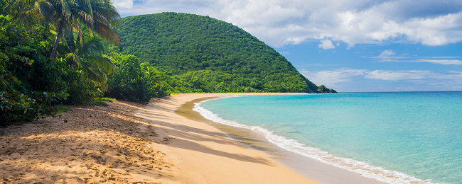 Cheap non-stop flights from Paris to Guadeloupe or Martinique from only €196!