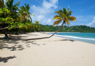 EXOTIC! Flights from Spain or Italy to Nosy Be Island, Madagascar from €484!