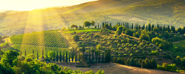 4-night stay in top-rated property in the Tuscany countryside + flights from Dusseldorf Weeze for only €146!