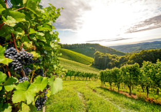 AUGUST: 4-night stay in top-rated property in the Tuscany countryside + flights from Frankfurt Hahn for just €147!