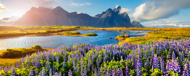 Late summer! Non-stop from Milan or Copenhagen to Iceland from only €82!