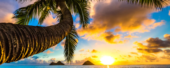 "Cheap flights from Seattle and Portland to the ""Big Island"" and Kauai, Hawaii for just $314!"