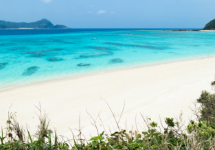 Cheap flights from Osaka to exotic Amami O Shima island for only $49!