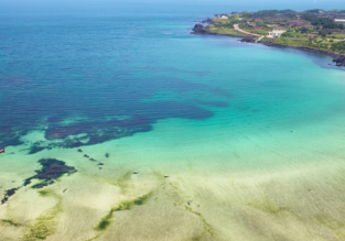 5* Asiana: Cheap flights from Seoul to Jeju Island from only $33!