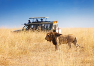 Cheap flights from Texas to Kenya from only $567!