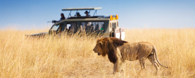 Cheap flights from Chicago to Guinea, Tanzania or Kenya from only $501!