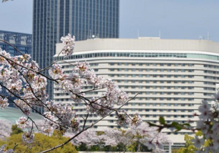 Double room at excellent 5* luxury hotel in Osaka, Japan for €35/ $40 per person!