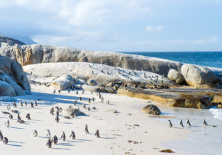 Cheap flights from London or Manchester to Cape Town, South Africa for only £394!