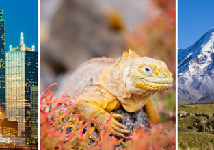 XMAS! Seoul to incredible Galapagos from only $812! 3 in 1 trip: Galapagos, Ecuador & Texas from $902!