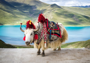 Singapore to magical Tibet for only $221!