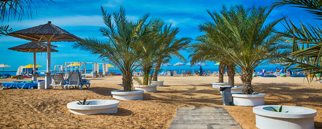 6-night B&B stay in top-rated 4* Doubletree by Hilton in UAE + rail & fly from Germany for €348!