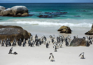 Non-stop from Cologne to Cape Town, South Africa for only €376!