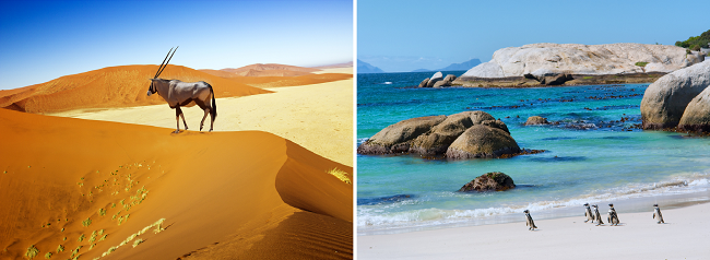 Porto, Namibia, Cape Town and Lisbon in one trip from Brussels or Berlin from only €476!