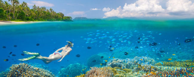 Indonesia island hopper from Singapore for $219! Visit Jakarta, Sulawesi, East Java, Lombok and Bali!