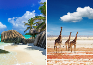 2 in 1! Cheap flights from India to both South Africa & Seychelles for only $410!