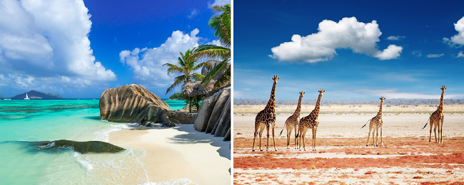 2 in 1 trip: Mumbai to both South Africa & the Seychelles for only $442!