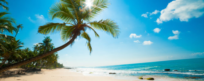 HOT! 7 day half board holiday at top rated beach resort in Sri Lanka + Etihad flights from Germany for €355!