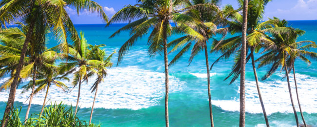 Cheap flights from New York to Sri Lanka for $514!