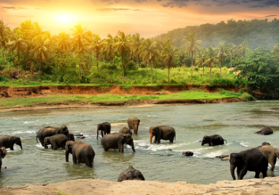 Cheap non-stop flights from Thailand to Sri Lanka for only $199 with checked bag included!
