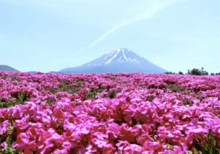 June! 5* ANA flights from Italy to many Japanese cities from €425!
