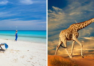 2 in 1 trip: London to both Mozambique and South Africa for only £509!