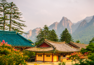 Cheap flights from the UK to South Korea from only £322!