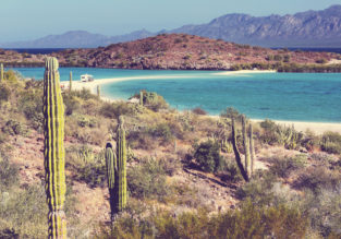 Spring break in Baja California! 7 nights at well-rated hotel + cheap flights from New York for just $381!