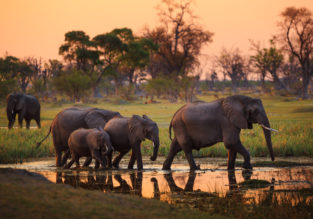 Destination Fly4free: Botswana