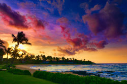 HOT! Cheap flights from Europe to Hawaii from only €319!